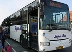 gratis busser på ærø